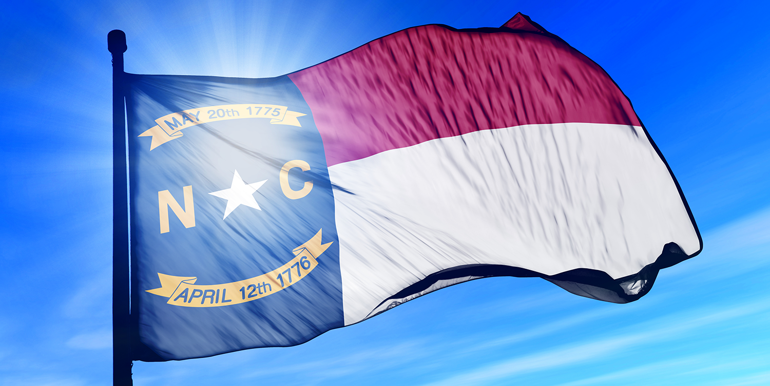 Disability IN North Carolina Flag